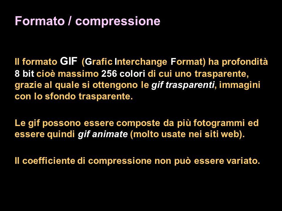 Formato / compressione Il formato GIF (Grafic Interchange Format) ha profondità 8 bit cioè massimo 256 colori di cui uno trasparente, grazie al quale si ottengono le gif trasparenti, immagini con lo sfondo trasparente.