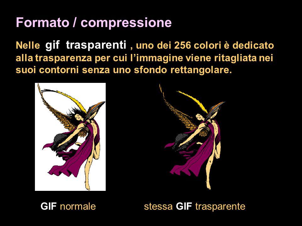 Formato / compressione Nelle gif trasparenti, uno dei 256 colori è dedicato alla trasparenza per cui limmagine viene ritagliata nei suoi contorni senza uno sfondo rettangolare.
