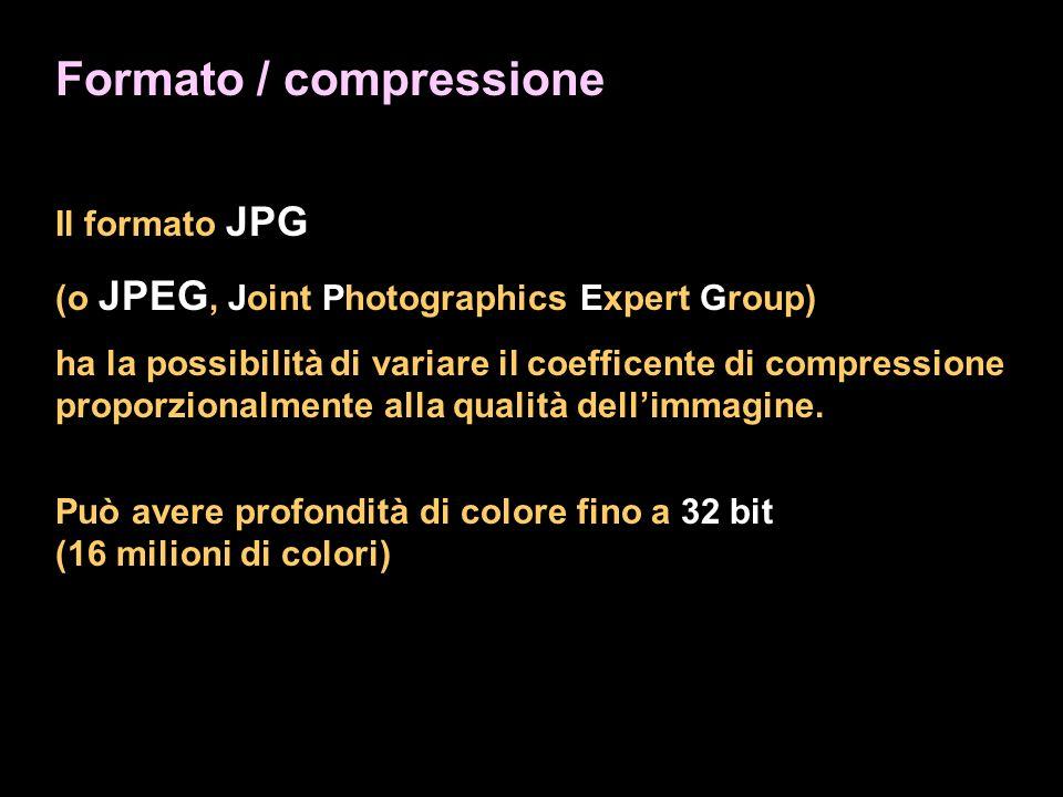 Formato / compressione Il formato JPG (o JPEG, Joint Photographics Expert Group) ha la possibilità di variare il coefficente di compressione proporzionalmente alla qualità dellimmagine.