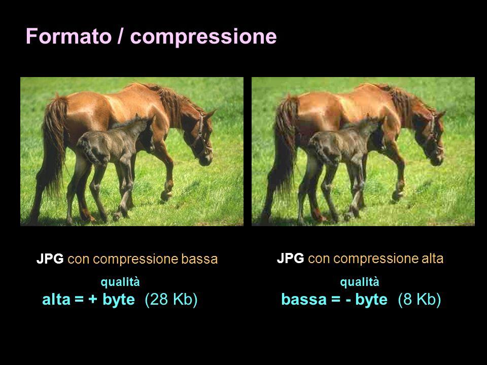 Formato / compressione JPG con compressione bassa qualità alta = + byte (28 Kb) JPG con compressione alta qualità bassa = - byte (8 Kb)