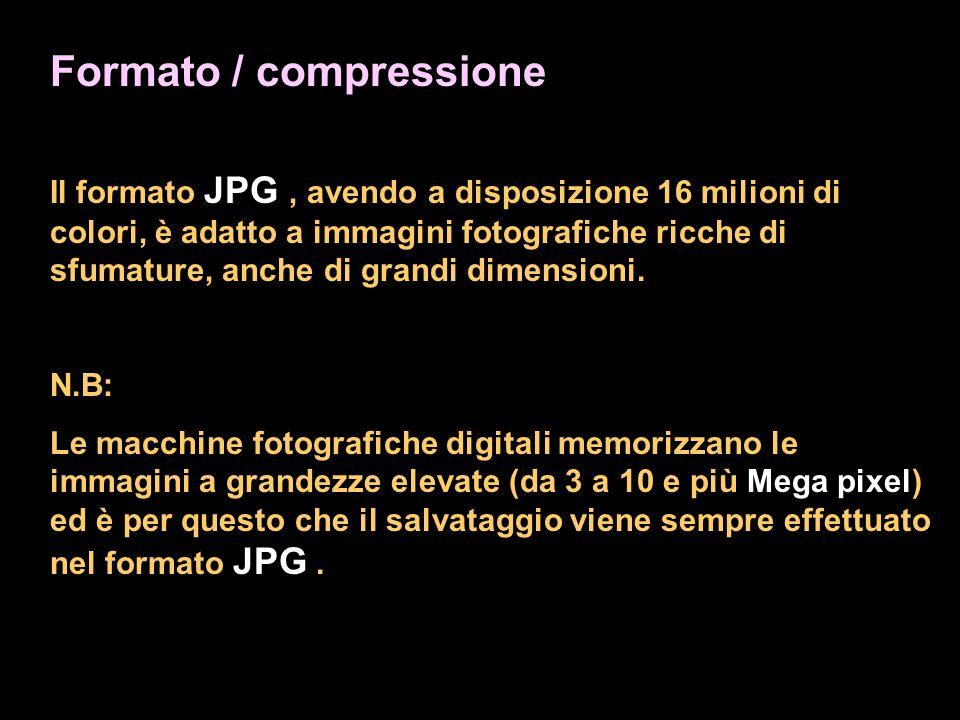 Formato / compressione Il formato JPG, avendo a disposizione 16 milioni di colori, è adatto a immagini fotografiche ricche di sfumature, anche di grandi dimensioni.