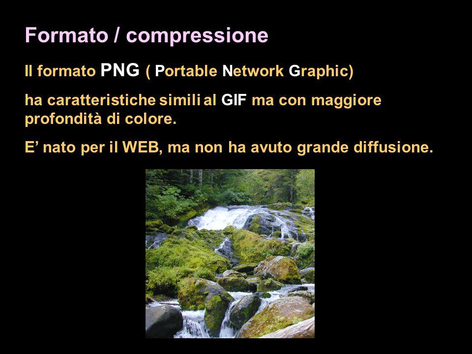 Formato / compressione Il formato PNG ( Portable Network Graphic) ha caratteristiche simili al GIF ma con maggiore profondità di colore. E nato per il