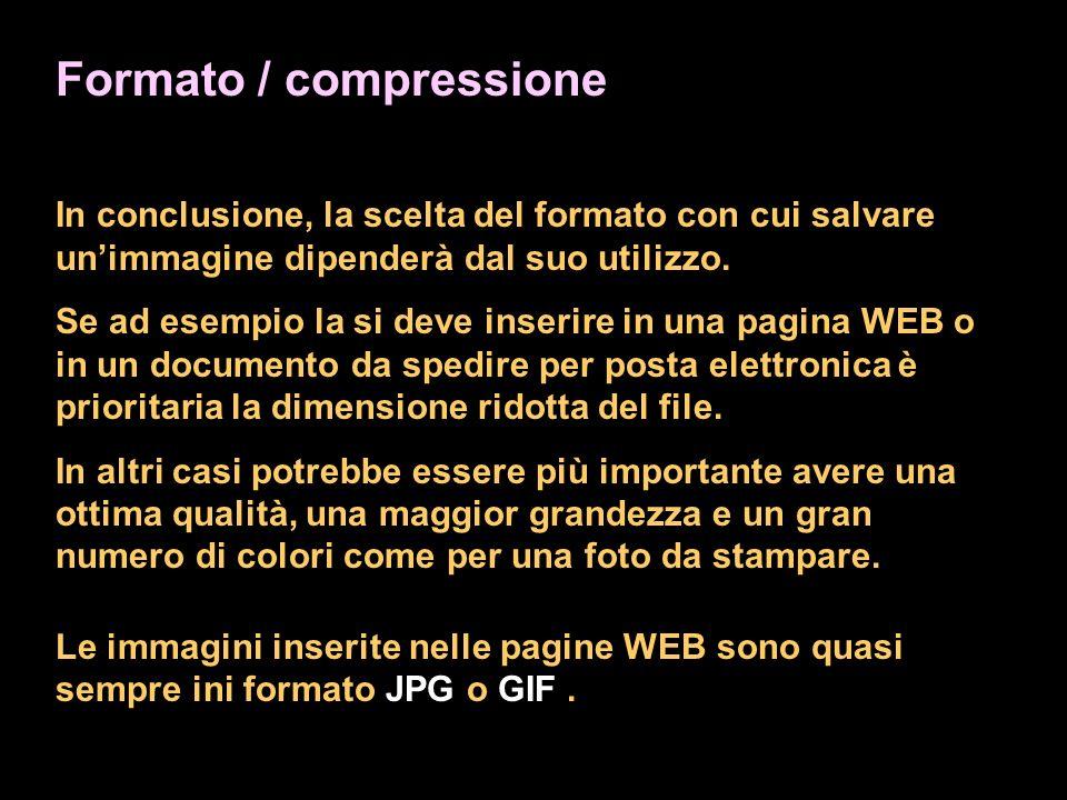 Formato / compressione In conclusione, la scelta del formato con cui salvare unimmagine dipenderà dal suo utilizzo.