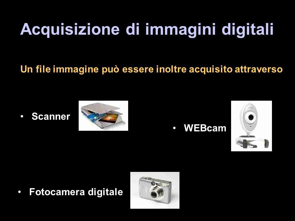 Acquisizione di immagini digitali Un file immagine può essere inoltre acquisito attraverso Scanner WEBcam Fotocamera digitale
