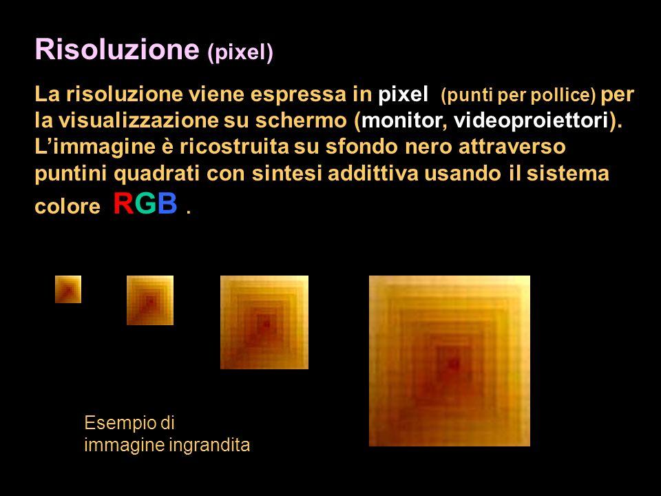 Risoluzione (pixel) La risoluzione viene espressa in pixel (punti per pollice) per la visualizzazione su schermo (monitor, videoproiettori). Limmagine