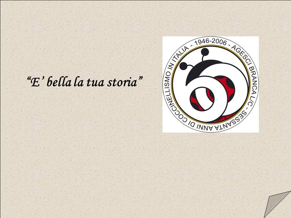 Il Bosco ha una storia…il Bosco è una storia…una storia lunga sessanta anni!!.