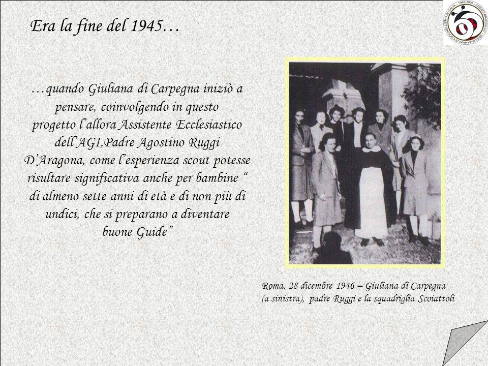 E bella la tua storia… 1946-2006 Sessanta anni di Coccinellismo in Italia