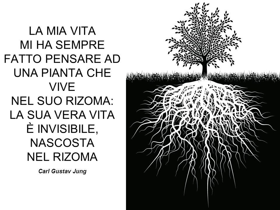 LA MIA VITA MI HA SEMPRE FATTO PENSARE AD UNA PIANTA CHE VIVE NEL SUO RIZOMA: LA SUA VERA VITA È INVISIBILE, NASCOSTA NEL RIZOMA Carl Gustav Jung