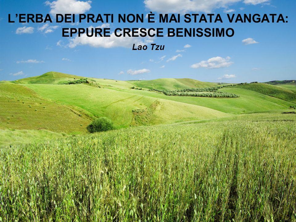 LERBA DEI PRATI NON È MAI STATA VANGATA: EPPURE CRESCE BENISSIMO Lao Tzu