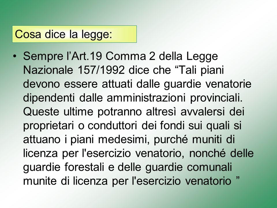 Cosa dice la legge: Sempre lArt.19 Comma 2 della Legge Nazionale 157/1992 dice che Tali piani devono essere attuati dalle guardie venatorie dipendenti dalle amministrazioni provinciali.