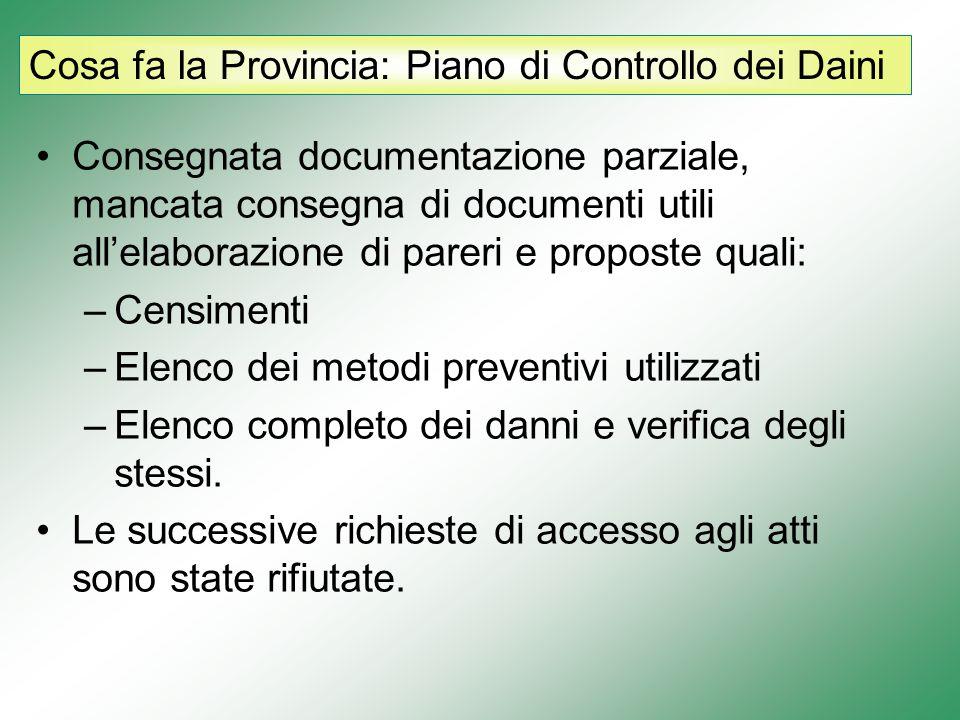 Cosa fa la Provincia: Piano di Controllo dei Cinghiali Consegnato solamente il Progetto del piano.