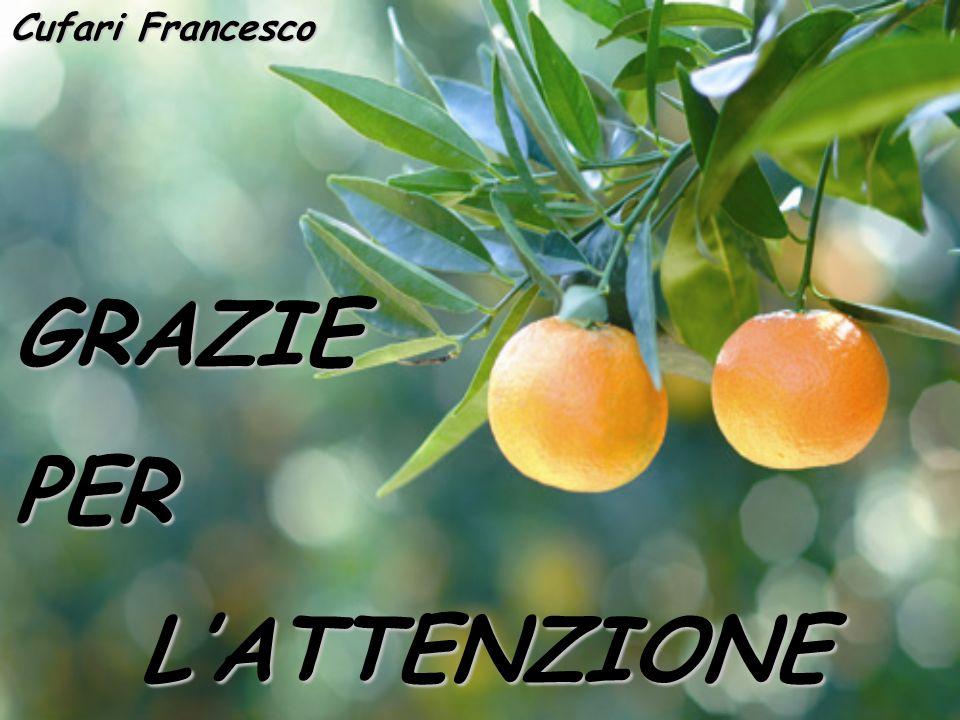 GRAZIEPERLATTENZIONE Cufari Francesco