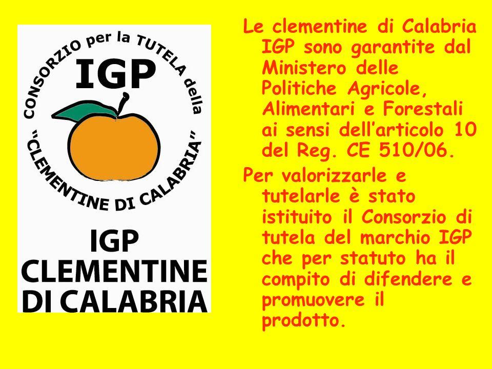Le clementine di Calabria IGP sono garantite dal Ministero delle Politiche Agricole, Alimentari e Forestali ai sensi dellarticolo 10 del Reg. CE 510/0