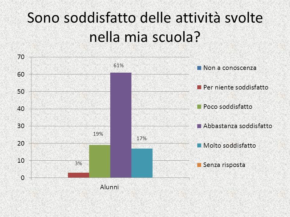 Sono soddisfatto delle attività svolte nella mia scuola? 61% 19% 17%