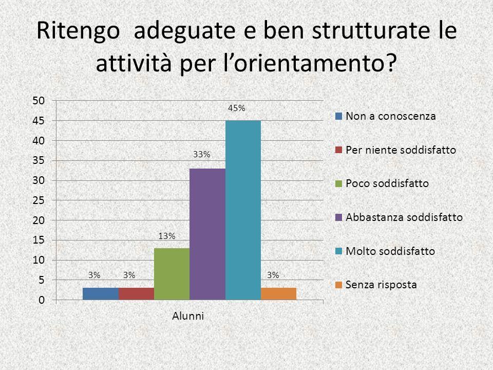 Ritengo adeguate e ben strutturate le attività per lorientamento? 45% 3% 33% 13% 3%