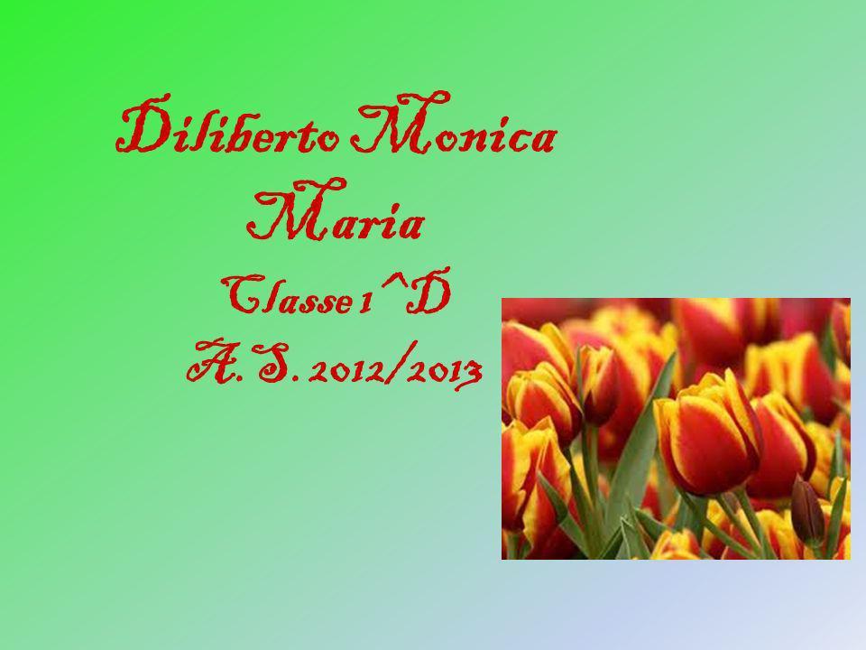 Diliberto Monica Maria Classe 1^D A.S. 2012/2013