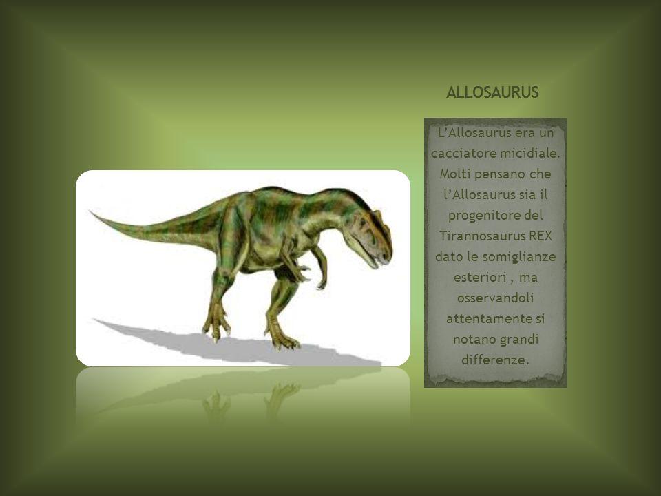 LAllosaurus era un cacciatore micidiale. Molti pensano che lAllosaurus sia il progenitore del Tirannosaurus REX dato le somiglianze esteriori, ma osse