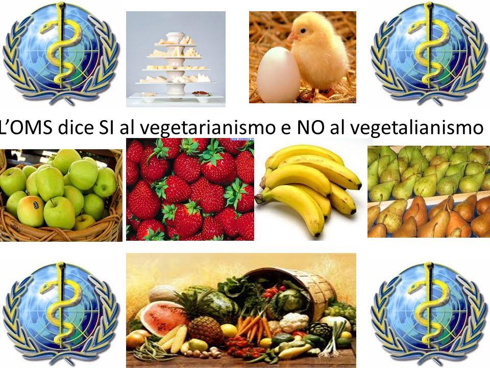 LOMS dice SI al vegetarianismo e NO al vegetalianismo