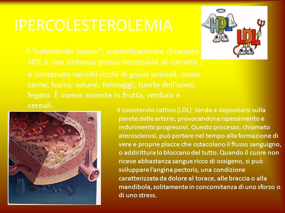 IPERCOLESTEROLEMIA Il colesterolo buono, scientificamente chiamato HDL è una sostanza grassa necessaria al corretto ; è contenuto nei cibi ricchi di g