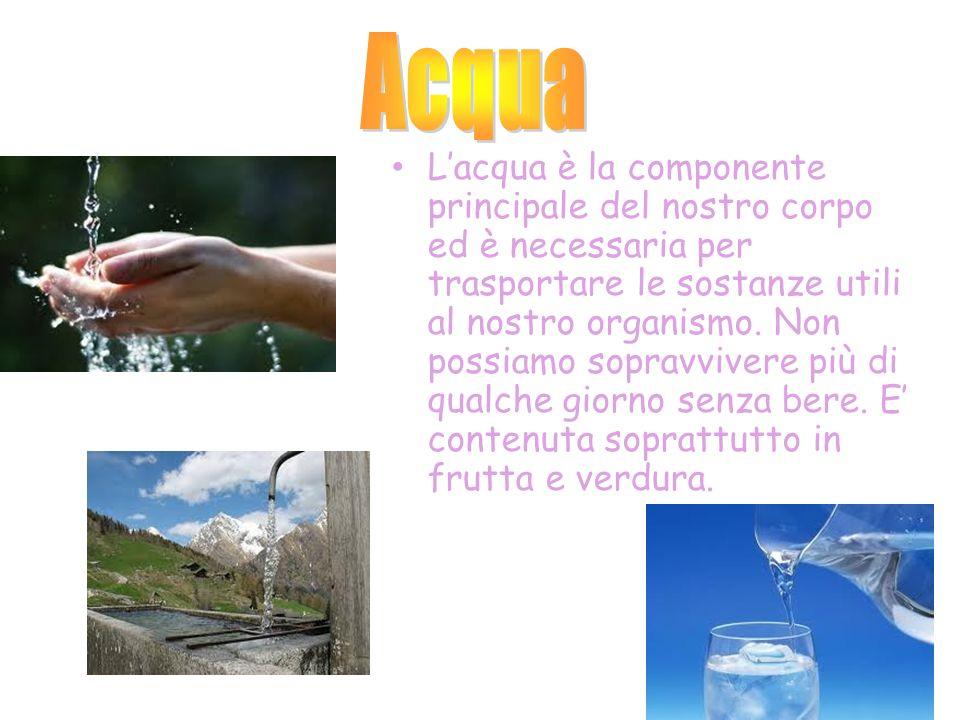 Lacqua è la componente principale del nostro corpo ed è necessaria per trasportare le sostanze utili al nostro organismo. Non possiamo sopravvivere pi