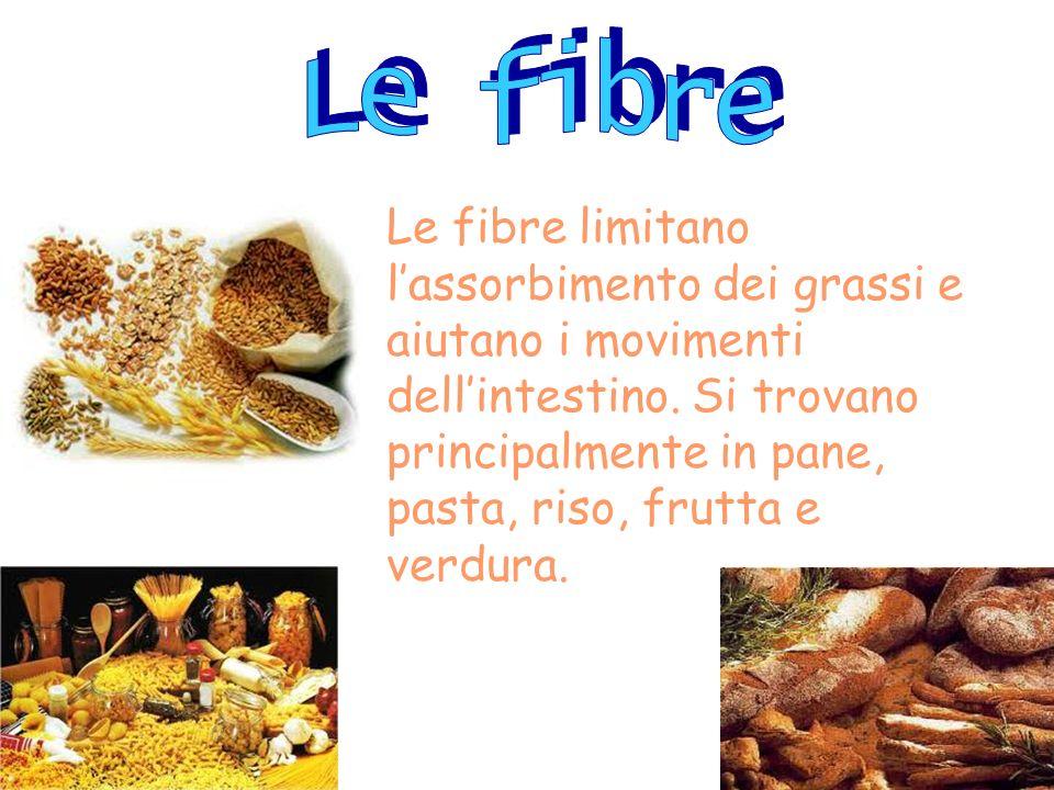 Le fibre limitano lassorbimento dei grassi e aiutano i movimenti dellintestino. Si trovano principalmente in pane, pasta, riso, frutta e verdura.