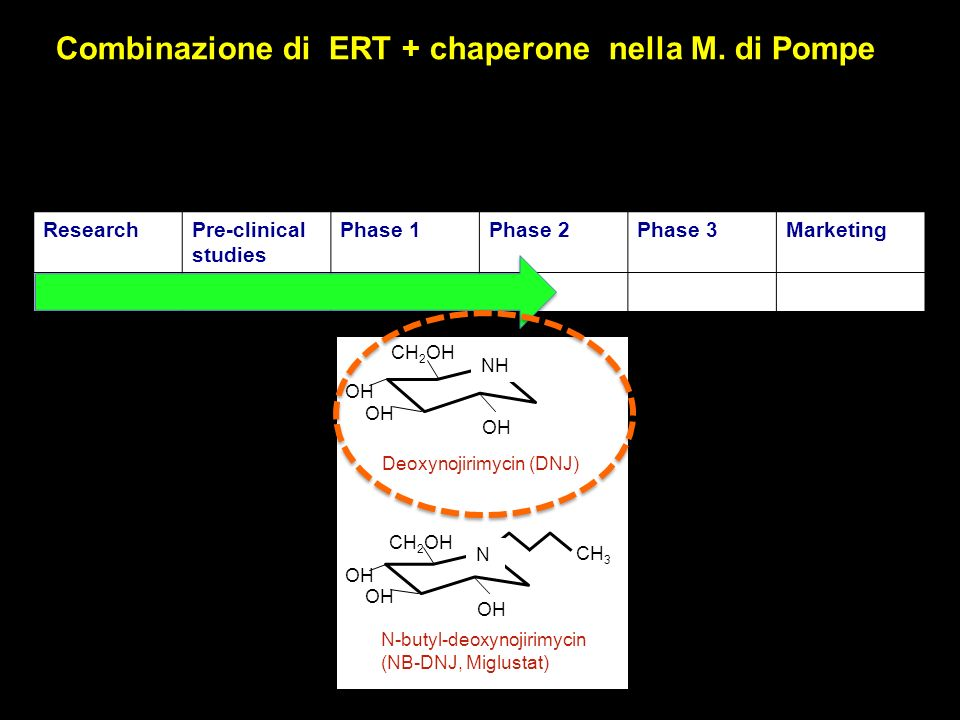 ResearchPre-clinical studies Phase 1Phase 2Phase 3Marketing N-butyl-deoxynojirimycin (NB-DNJ, Miglustat) Deoxynojirimycin (DNJ) OH CH 2 OH OH NH CH 3 OH CH 2 OH OH N Combinazione di ERT + chaperone nella M.