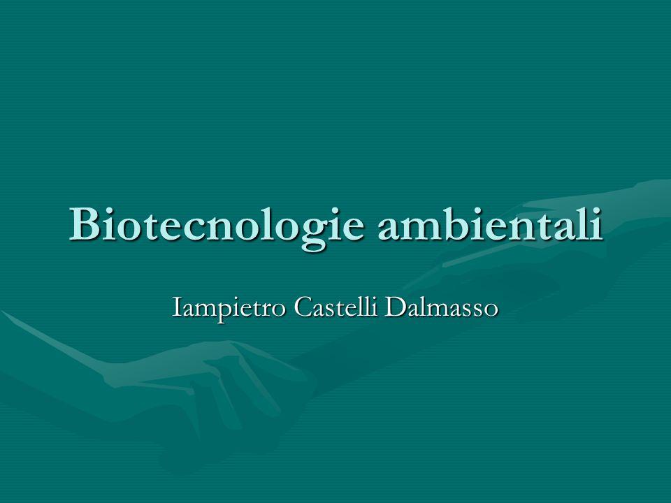 Biotecnologie ambientali Iampietro Castelli Dalmasso