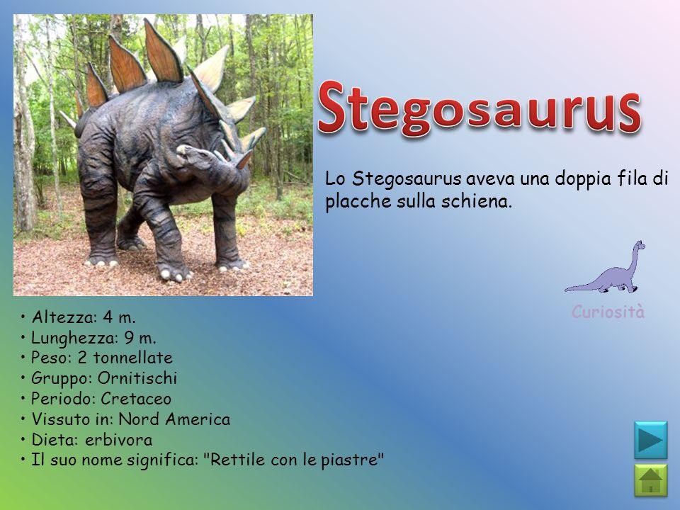 Lo Stegosaurus aveva una doppia fila di placche sulla schiena. Curiosità Altezza: 4 m. Lunghezza: 9 m. Peso: 2 tonnellate Gruppo: Ornitischi Periodo: