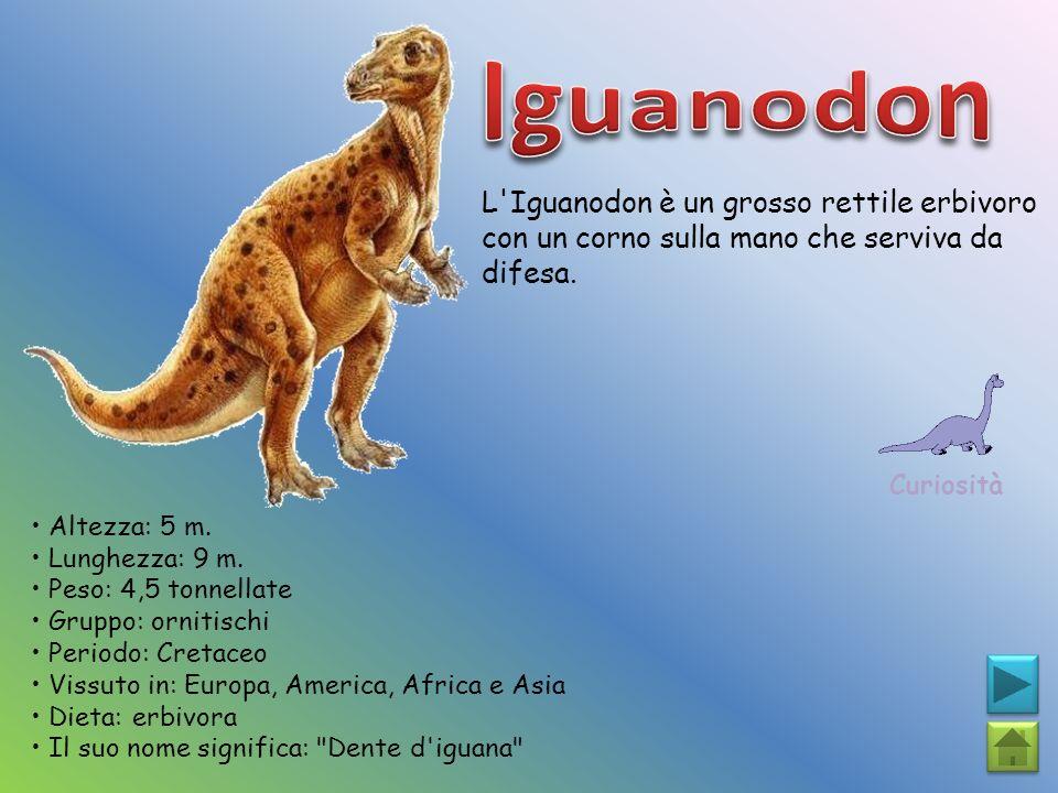 L'Iguanodon è un grosso rettile erbivoro con un corno sulla mano che serviva da difesa. Curiosità Altezza: 5 m. Lunghezza: 9 m. Peso: 4,5 tonnellate G