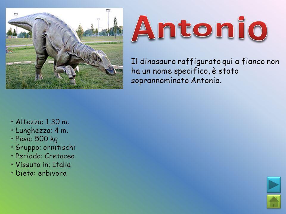 Il dinosauro raffigurato qui a fianco non ha un nome specifico, è stato soprannominato Antonio. Altezza: 1,30 m. Lunghezza: 4 m. Peso: 500 kg Gruppo: