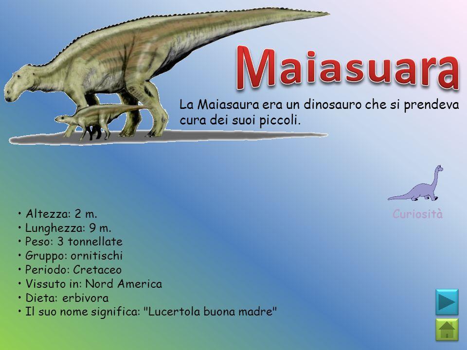 La Maiasaura era un dinosauro che si prendeva cura dei suoi piccoli. Curiosità Altezza: 2 m. Lunghezza: 9 m. Peso: 3 tonnellate Gruppo: ornitischi Per