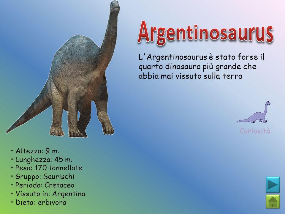 L'Argentinosaurus è stato forse il quarto dinosauro più grande che abbia mai vissuto sulla terra Curiosità Altezza: 9 m. Lunghezza: 45 m. Peso: 170 to