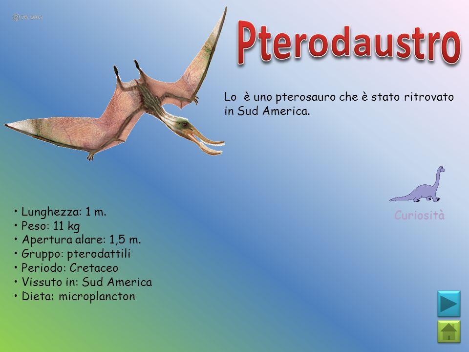 Lo è uno pterosauro che è stato ritrovato in Sud America. Curiosità Lunghezza: 1 m. Peso: 11 kg Apertura alare: 1,5 m. Gruppo: pterodattili Periodo: C