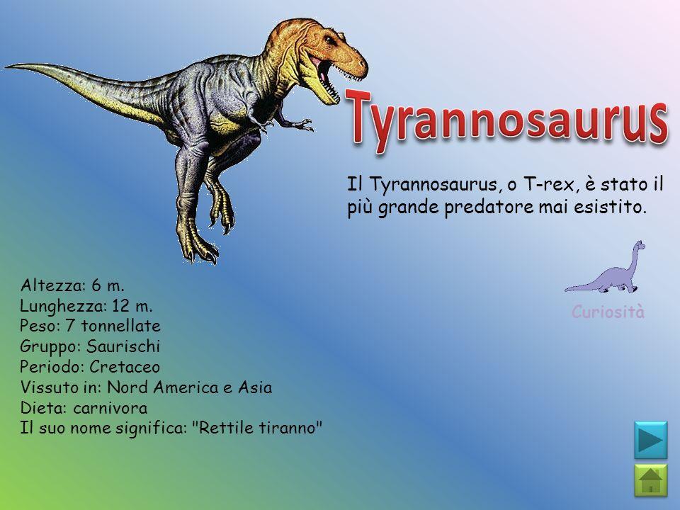 Il Tyrannosaurus, o T-rex, è stato il più grande predatore mai esistito. Curiosità Altezza: 6 m. Lunghezza: 12 m. Peso: 7 tonnellate Gruppo: Saurischi