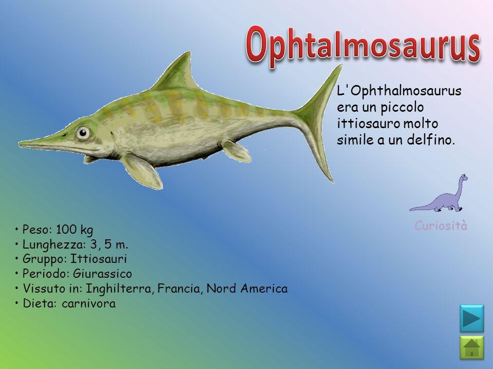 L'Ophthalmosaurus era un piccolo ittiosauro molto simile a un delfino. Curiosità Peso: 100 kg Lunghezza: 3, 5 m. Gruppo: Ittiosauri Periodo: Giurassic
