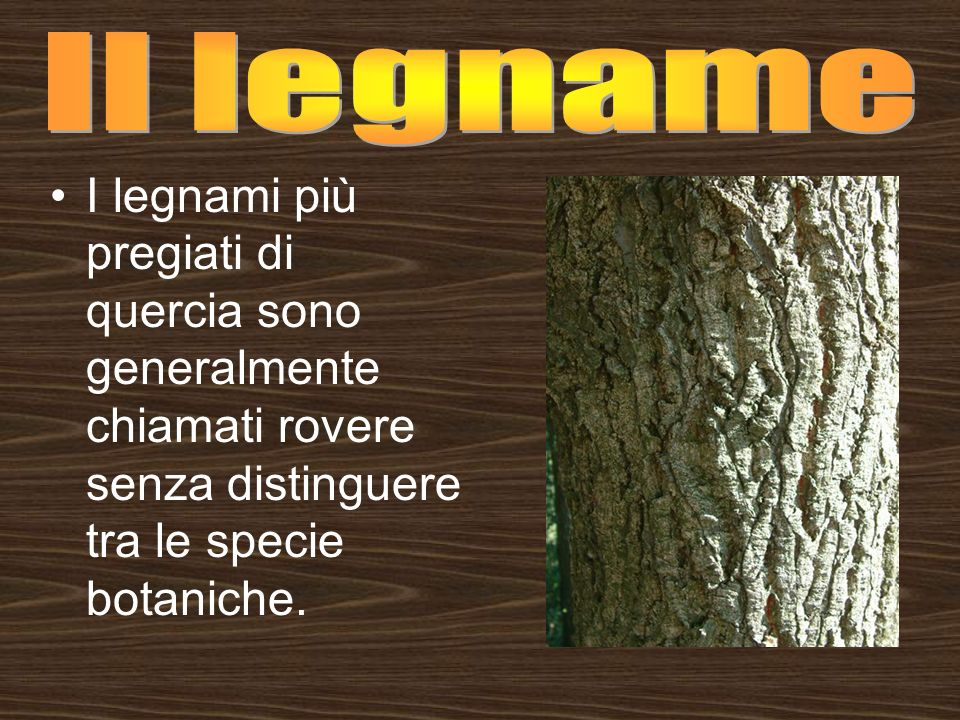 I legnami più pregiati di quercia sono generalmente chiamati rovere senza distinguere tra le specie botaniche.