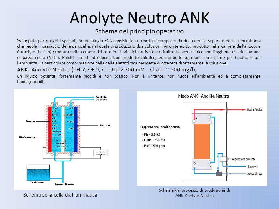 Anolyte Neutro ANK Schema del principio operativo Sviluppata per progetti speciali, la tecnologia ECA consiste in un reattore composto da due camere s