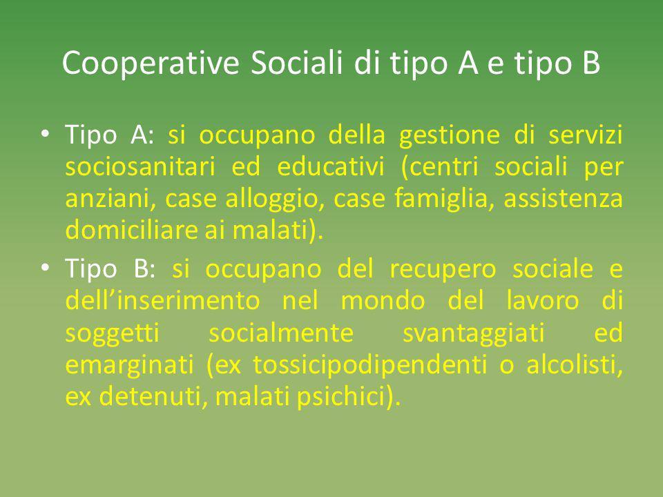 Cooperative Sociali di tipo A e tipo B Tipo A: si occupano della gestione di servizi sociosanitari ed educativi (centri sociali per anziani, case alloggio, case famiglia, assistenza domiciliare ai malati).