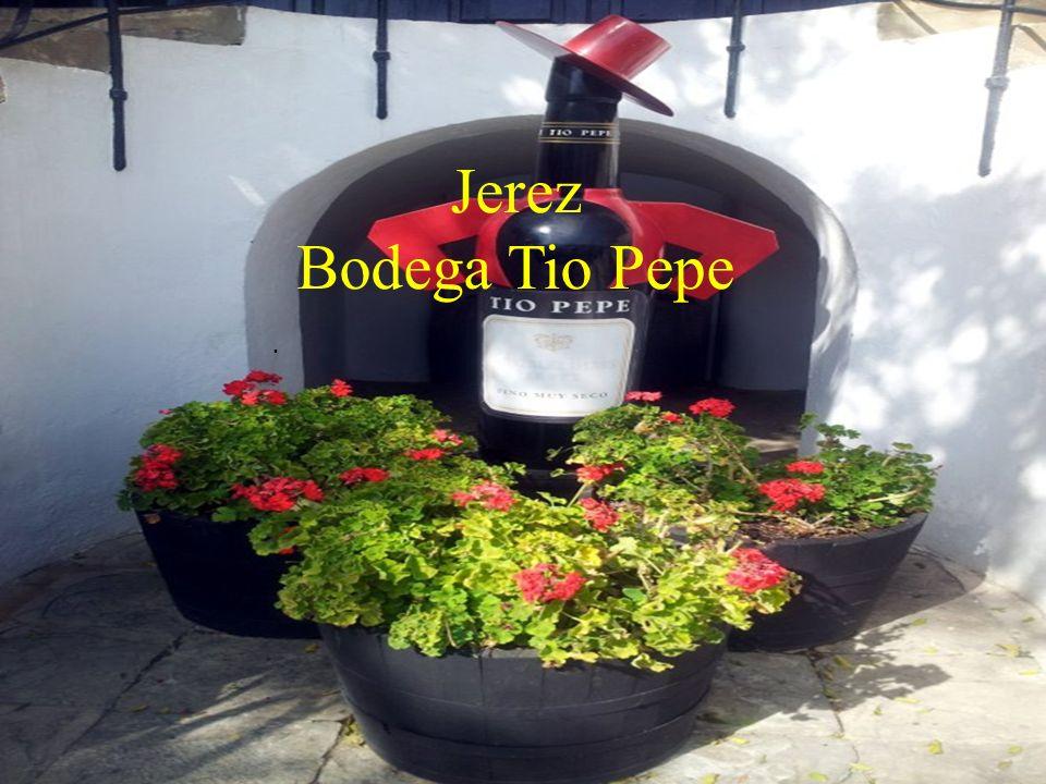 Jerez Bodega Tio Pepe.