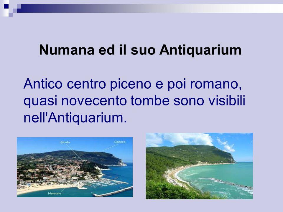 Numana ed il suo Antiquarium Antico centro piceno e poi romano, quasi novecento tombe sono visibili nell'Antiquarium.