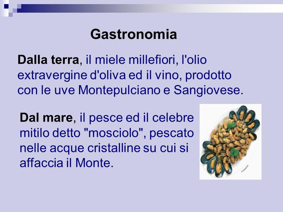 Gastronomia Dalla terra, il miele millefiori, l'olio extravergine d'oliva ed il vino, prodotto con le uve Montepulciano e Sangiovese. Dal mare, il pes