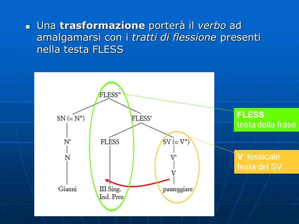 Una trasformazione porterà il verbo ad amalgamarsi con i tratti di flessione presenti nella testa FLESS Una trasformazione porterà il verbo ad amalgam