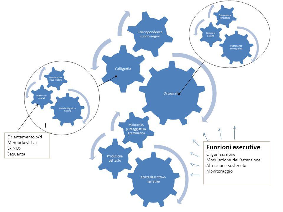 Funzioni esecutive Organizzazione Modulazione dellattenzione Attenzione sostenuta Monitoraggio Orientamento b/d Memoria visiva Sx > Dx Sequenza