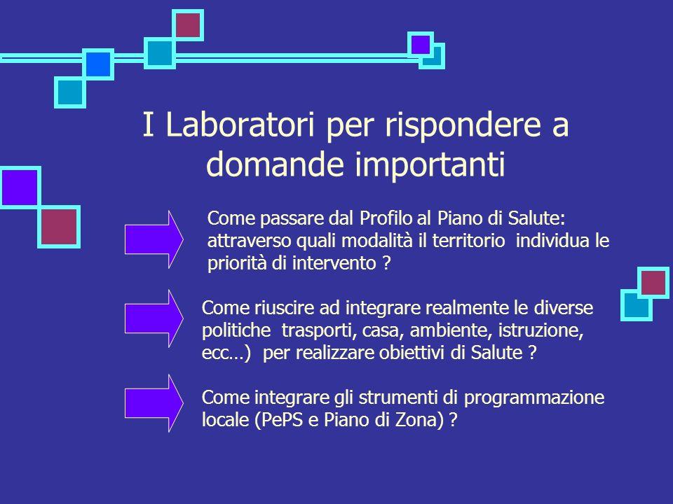 I Laboratori per rispondere a domande importanti Come passare dal Profilo al Piano di Salute: attraverso quali modalità il territorio individua le priorità di intervento .