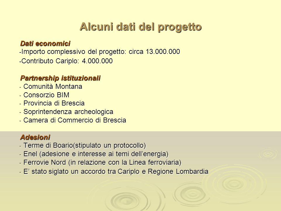 Alcuni dati del progetto Dati economici - Importo complessivo del progetto: circa 13.000.000 - Contributo Cariplo: 4.000.000 Partnership istituzionali