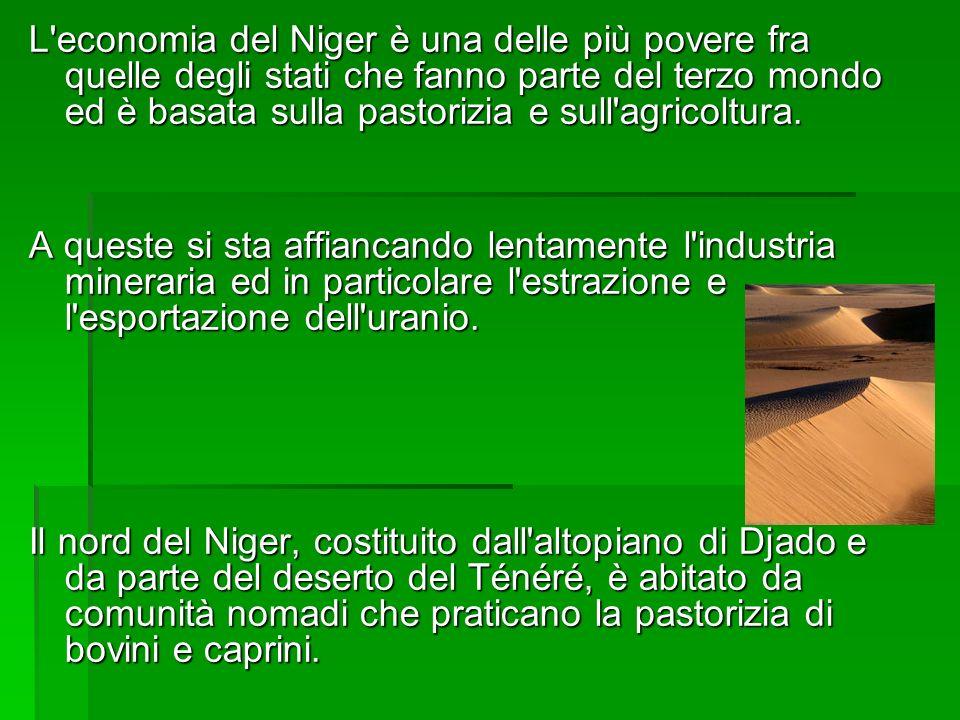 L'economia del Niger è una delle più povere fra quelle degli stati che fanno parte del terzo mondo ed è basata sulla pastorizia e sull'agricoltura. A