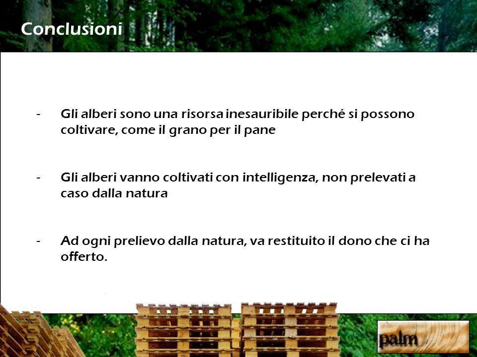 Conclusioni -Gli alberi sono una risorsa inesauribile perché si possono coltivare, come il grano per il pane -Gli alberi vanno coltivati con intelligenza, non prelevati a caso dalla natura -Ad ogni prelievo dalla natura, va restituito il dono che ci ha offerto.