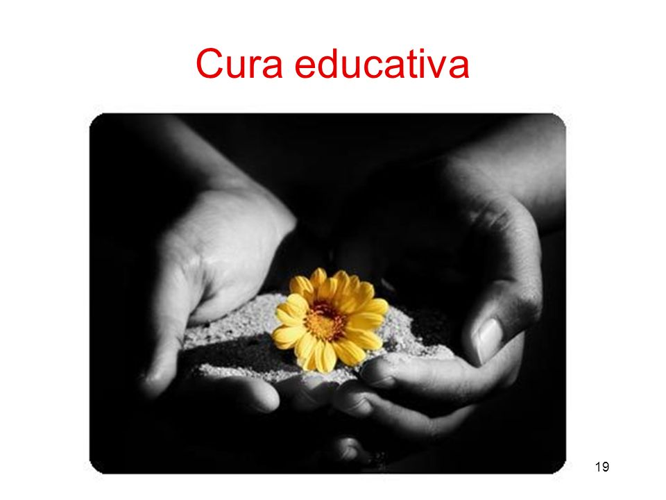 19 Cura educativa