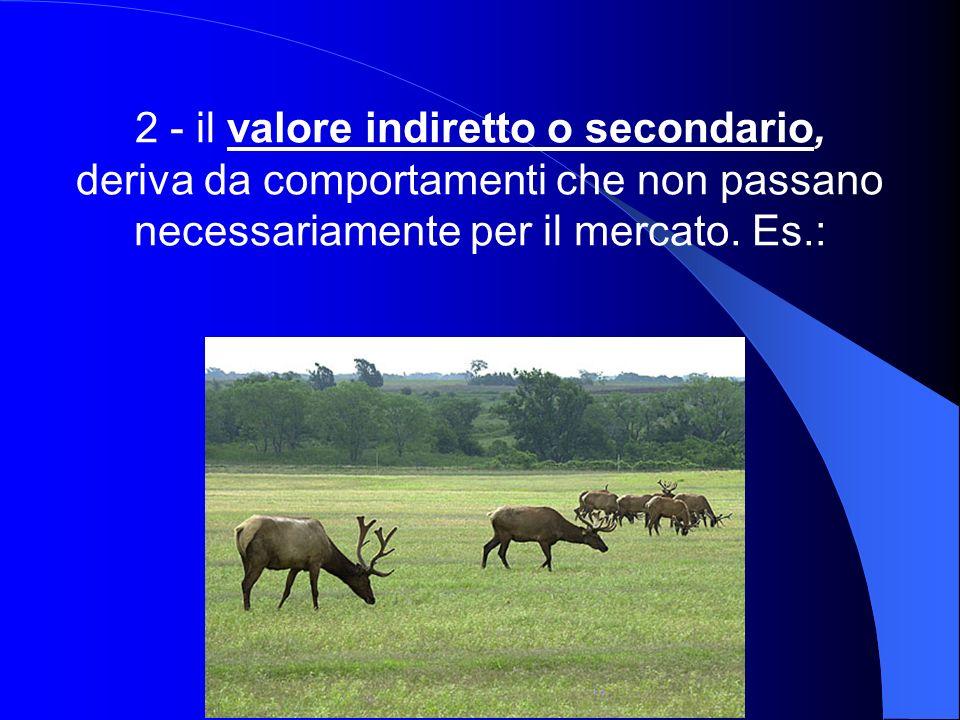 2 - il valore indiretto o secondario, deriva da comportamenti che non passano necessariamente per il mercato. Es.: