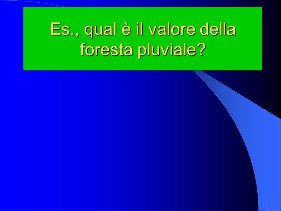 Es., qual è il valore della foresta pluviale?